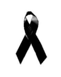 20090619125748-lazo-negro